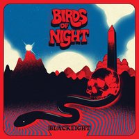 Blacklight — Birds of Night