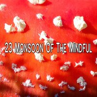 23 Monsoon Of The Mindful — Thunderstorms