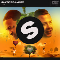 Yes — Sam Feldt, Akon