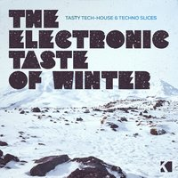 The Electronic Taste of Winter — сборник