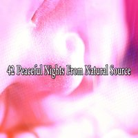 42 Peaceful Nights From Natural Source — Ocean Sounds Collection