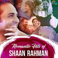Romantic Hits Of Shaan Rahman — сборник