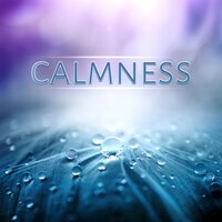 Calmness – Relaxation, Rest, Piano Music, Stress Relief, Massage, Spa, Meditation, Easy Listening, Music to Learn — Calming Music Ensemble