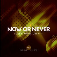 Now Or Never, Vol. 4 (Deep-House ONLY!) — сборник