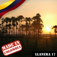Made In Colombia / Llanera / 17 — сборник