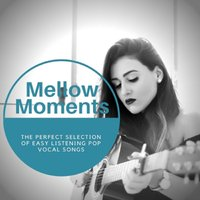 Mellow Moments - The Perfect Selection Of Easy Listening Pop Vocal Songs — сборник