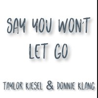 Say You Won't Let Go — Donnie Klang, Taylor Kiesel
