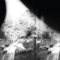 Asunder, Sweet and Other Distress — Godspeed You! Black Emperor