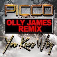 You Know Why — Picco