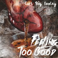 Feeling Too Good — Curt Big Fooley, Beats Craze