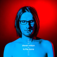 To The Bone — Steven Wilson