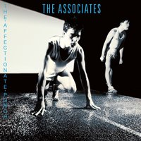 The Affectionate Punch — The Associates