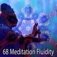 68 Meditation Fluidity — Classical Study Music