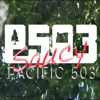 Saucy — Pacific 503