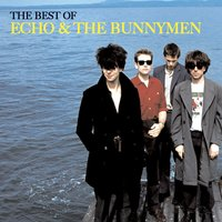 The Best of Echo & The Bunnymen — Echo and the Bunnymen