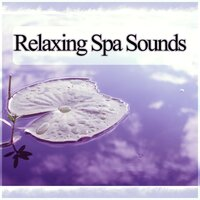 Relaxing Spa Sounds - Most Popular Songs for Massage Therapy, Music for Healing Through Sound and Touch, Serenity Relaxing Spa, Piano Music and Sounds of Nature Music for Relaxation — Cristal Relaxing Spa Universe