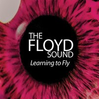 Learning to Fly — The Floyd Sound