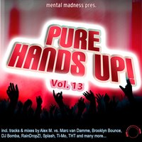 Mental Madness pres. Pure Hands Up! Vol. 13 — сборник