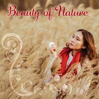 Beauty of Nature - Sounds of Reflection, Melody for Exercise, Natural Rhythms of Life, Behavior Harmoni, Mute Mind, Thinking and Thinking — Nature Sound Collection