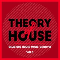 Theory of House (Delicious House Music Grooves), Vol. 2 — сборник
