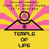 Look at Their Eyes It's Ecstasy (1989 - 1990 Rave) [Mr. Quest Presents] — Temple of Life