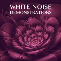 12 White Noise Demonstrations — White Noise Baby Sleep, White Noise for Babies, White Noise Therapy