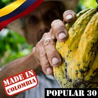 Made In Colombia / Popular / 30 — сборник