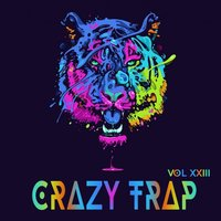 Crazy Trap, Vol. 23 — сборник
