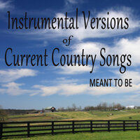 Instrumental Versions of Current Country Songs: Meant To Be — Steve Petrunak