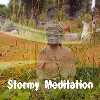 Stormy Meditation — The Rain Library
