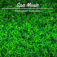 14 Meditaion Zen Masters Collection - Spa Music Paradise — Spa & Spa, Spa, Relaxation and Dreams, Spa Music, Spa, Relaxation and Dreams, Spa & Spa, SPA Music