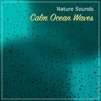 16 Nature Sounds, Calm Ocean Waves, & Soothing Rain — Rainforest, Sounds Of Nature : Thunderstorm, Rain, Rain, Sounds Of Nature : Thunderstorm, Rain, Rain, Rainforest