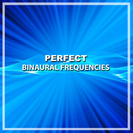 #13 Perfect Binaural Frequencies — Theta Sounds, Meditation Music Club, Appliances for Meditation, Meditation Music Club, Appliances for Meditation, Theta Sounds