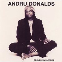 Trouble In Paradise — Andru Donalds