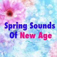 Spring Sounds Of New Age — сборник