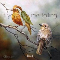 If You See Me Falling — Rost