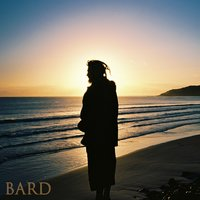 How Good Is It? — bard