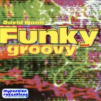 Funky and Groovy - Hot Funk Lounge and Party — DAVID MANN, Mann, David