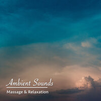 12 Ambient Sounds: Perfect for Massage & Relaxation — Spa, Spa Music Paradise, Spa Relaxation, Spa, Spa Relaxation, Spa Music Paradise