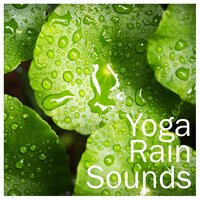 18 Rain Yoga Sounds - Relaxing, Soothing Ambient Music — Rain for Deep Sleep, Yoga, The Rain Library