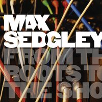 From the Roots to the Shoots — Max Sedgley