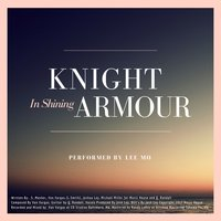 Knight in Shining Armour — Lee Mo