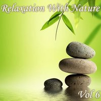 Relaxation With Nature, Vol. 6 — сборник