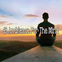 43 Ambience for the Mind — Massage Therapy Music
