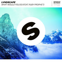What Would You Do — LVNDSCAPE, Ruby Prophet