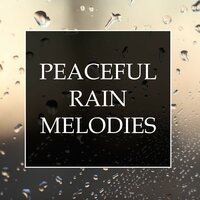 Peaceful Rain Melodies - A Collection of 20 Relaxing Water Melodies for Stress & Anxiety Relief, Better Sleep and Deep Focus — Peaceful Zen, Asian Zen: Spa Meditation Music & Rain Shower Spa, Peaceful Zen, Asian Zen: Spa Meditation Music, Rain Shower Spa