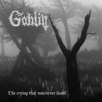 The Crying That Was Never Heard — Goblin
