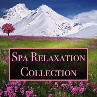 Spa Relaxation Collection - 20 Relaxing Water and Ocean Sounds for Deep Meditation, Massage, Yoga, Focus and Concentration — Spa Relaxation, Spa Relaxation & Spa and Chill Out Lounge Café Essentials, Spa Relaxation, Spa Relaxation & Spa and Chill Out Lounge Café Essentials