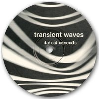 Born with a Body and Fucked in the Head — Transient Waves
