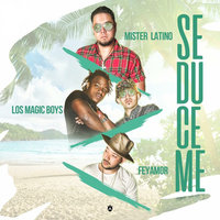 Seduceme — Los Magic Boys, Mister Latino, Feyamor